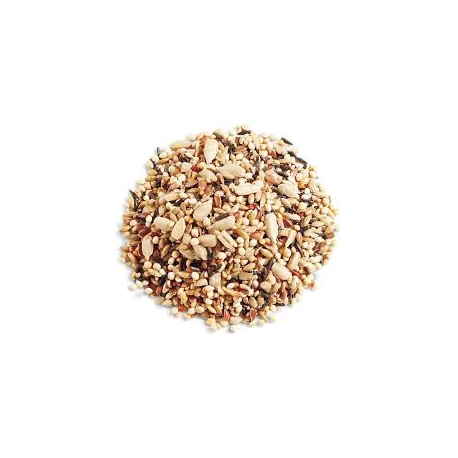 Biomix semillas (sésamo, chía, girasol, amapola) 300g Ecológico
