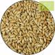Grano de cebada 500g Ecológico