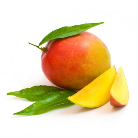 Nectar de mango 750ml Ecológico