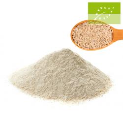 Harina de arroz 1kg Ecológica