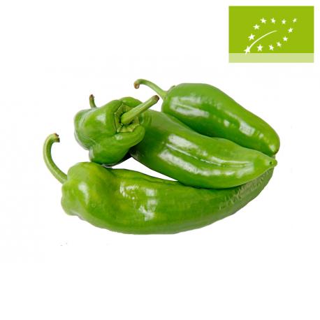 Pimiento verde italiano Ecológico