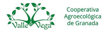 Valle y Vega S.C.A.